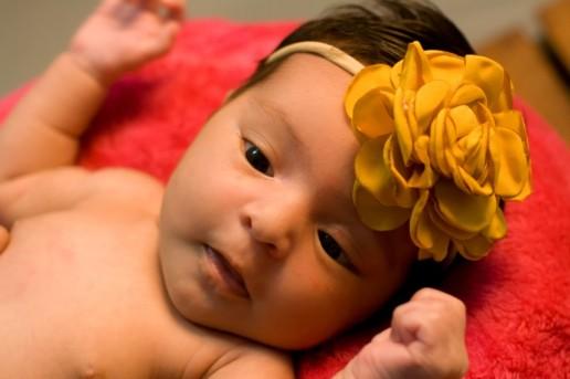 fotografia new born